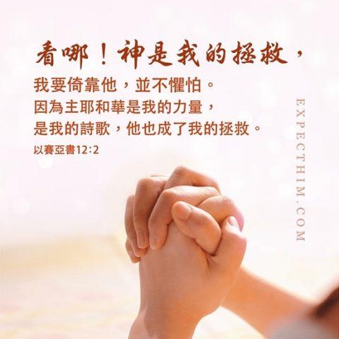 看哪!神是我的拯救,我要倚靠他,並不懼怕。因為主耶和華是我的力量,是我的詩歌,他也成了我的拯救。