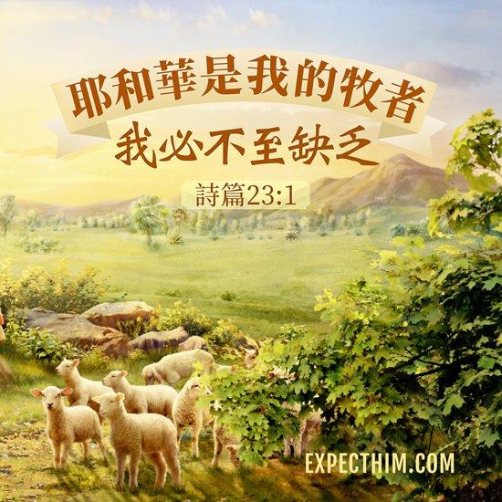 主把羊比喻為跟隨主的信徒