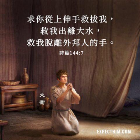 求你從上伸手救拔我,救我出離大水,救我脫離外邦人的手。詩篇144:7