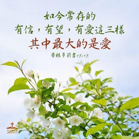 如今常存的有信,有望,有愛這三樣,其中最大的是愛。