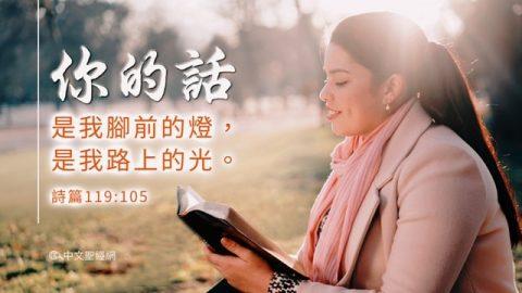 聖經金句:神的話語
