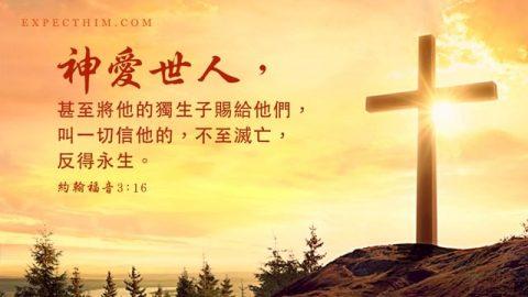 聖經金句:神愛世人