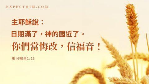成熟的麥子圖片上寫着傳福音經文:「日期滿了,神的國近了。你們當悔改,信福音!」
