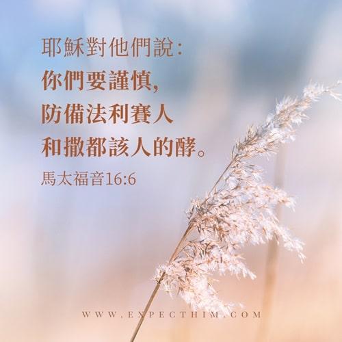 馬太福音 16:6-靈修經文