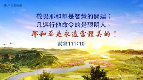 聖經金句:讚美耶和華