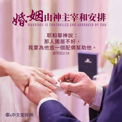 婚姻由神主宰和安排-聖經金句圖片
