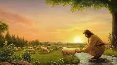耶穌給小羊喂水喝