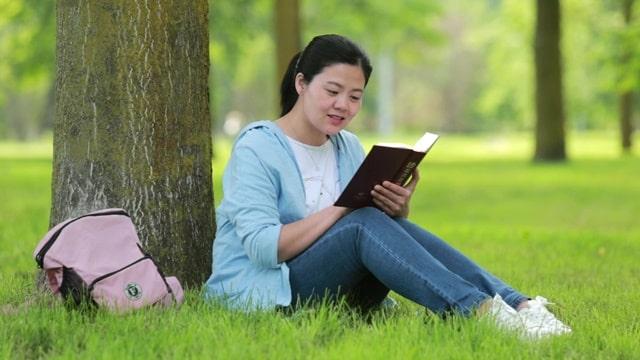 姊妹坐在樹下的草坪上讀神的話語