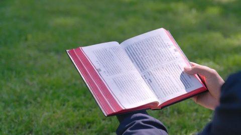 如何讀聖經才能得著永生(有聲讀物)